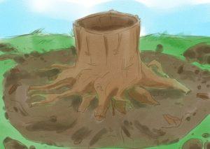 Чем полить растение чтобы оно погибло
