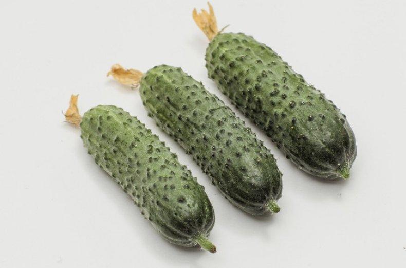 Описание сорта огурцов Паратунка, выращивание и урожайность
