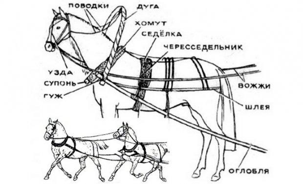 Чертеж саней для лошади